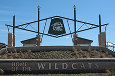 wildcat and stadium entrance